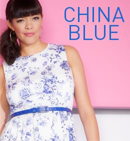 Shop the China Blue Trend >