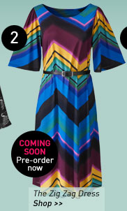 the zig zag dress