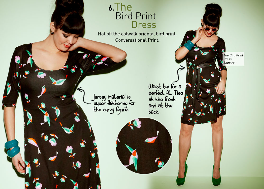 the Bird Print Dress