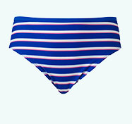 Blue Stripe Bikini Briefs