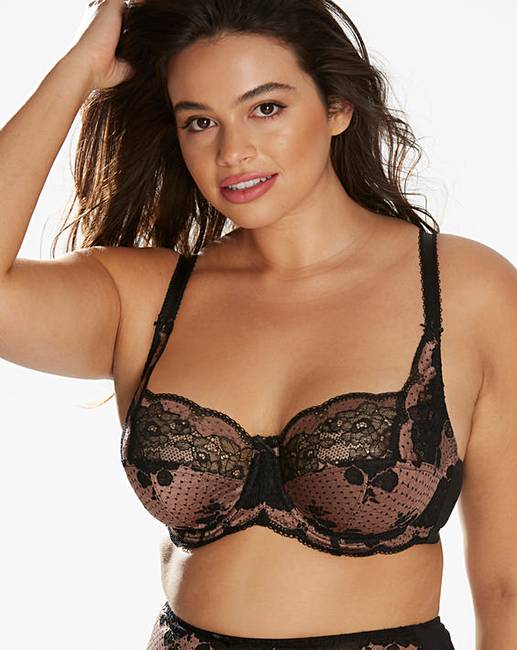 970ffc71684d0 Panache Clara Full Cup Taupe/Black Bra. Click to view 'Panache' products.  Rollover image to magnify