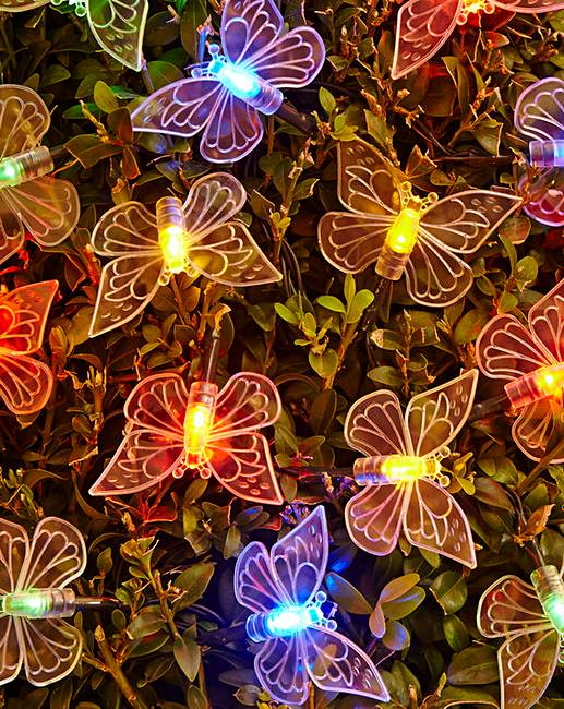 Set Of 80 Multi Butterfly String Lights Premier Man