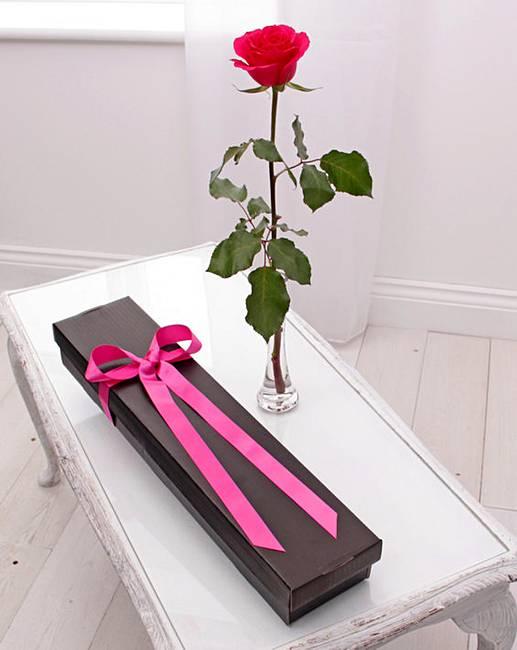 Single pink rose j d williams single pink rose mightylinksfo