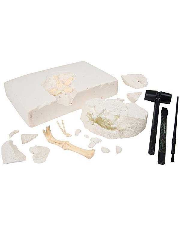 Jurassic World Duo Dino Excavation Kit