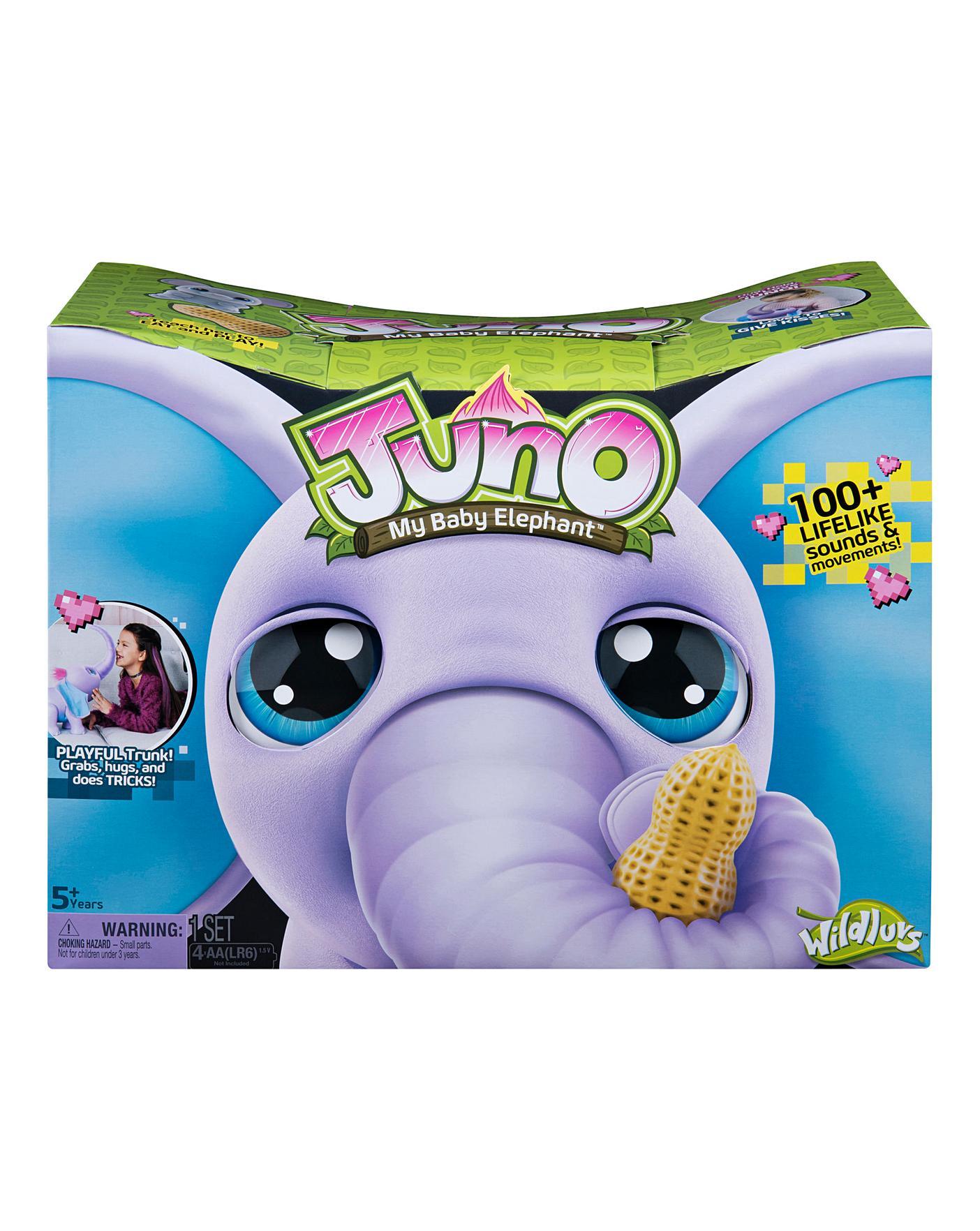 Juno My Baby Elephant   J D Williams