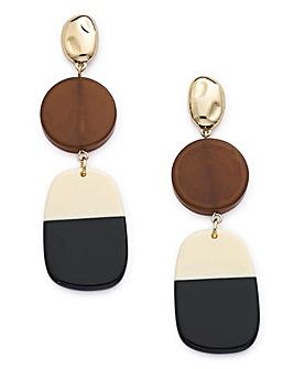 Ombre Resin Earrings