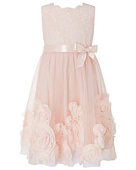 Monsoon Macaroon Pink 3D Flower Dress