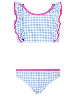Accessorize Gingham Bikini