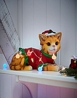 Chloe the Christmas Cat with Lights