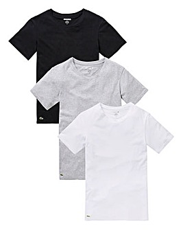 Lacoste Pack of 3 T-shirts