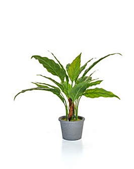 Artificial Spathiphyllum in Pot