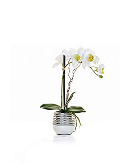 Artificial Phalaenopsis Orchid in Sv Pot