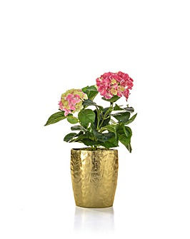 Artificial Hydrangea in Vase