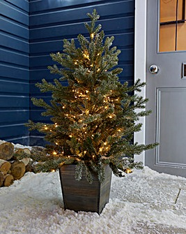 Pre-Lit Frozen Spruce Porch Tree