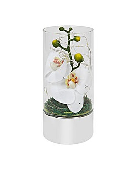Glass Tube With White Flower & LED Light