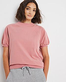 Shell Peached Short Sleeve Sweatshirt