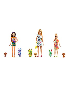 Barbie Birthday Surprise Sister & Pet Accessories