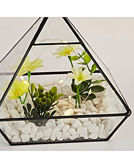 Terrerium with LED Lighting