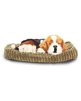 Tactile Pet Beagle