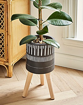 Darnell Planter With Natural Beech Wood Legs