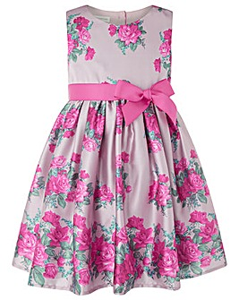Monsoon Baby Vintage Rose Dress