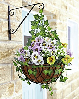 Pansy Ready Made Hanging Basket