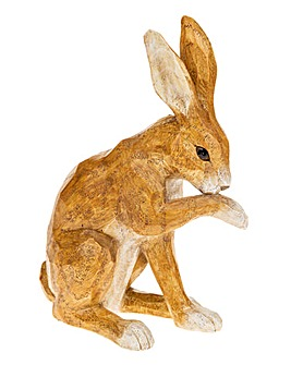 Country Brown Hare