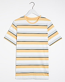 Multi Stripe T-Shirt Long