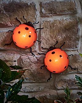 Solar LED Ladybirds