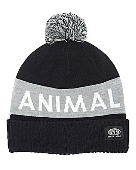 Animal Boys Tibor Beanie Bobble Hat