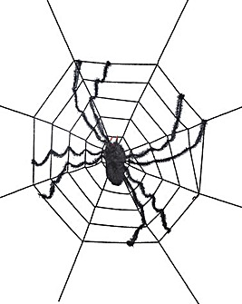 Web and Spider 2.4m
