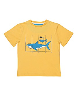 Kite Megalodon T-Shirt