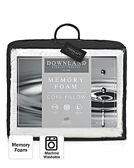 Memory Foam Core Pillow