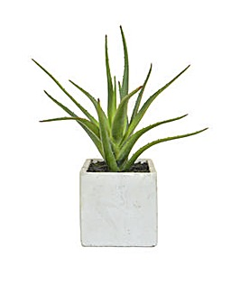 Artificial Aloe in Cement Pot