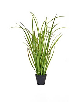 Artificial Grass in Pot