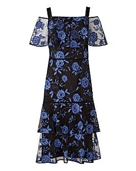 Coast Cruella Emriodered Dress