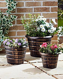 Set of 3 Round Barrel Planters