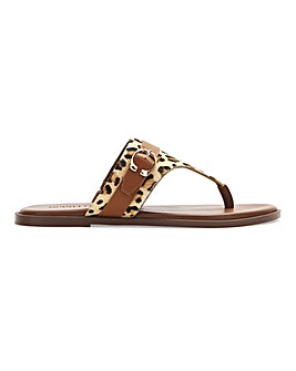 Leather Toe Post Animal Print Sandals Wide E Fit