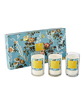 Oasis Leighton Freesia & Musk Votives Gift Set