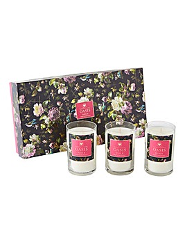Oasis Renaissance Rose Votives Gift Set