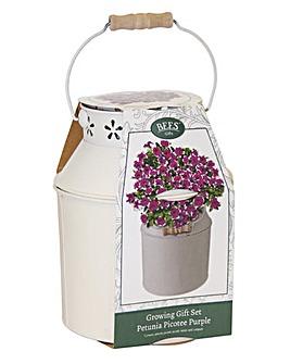 Petunia Milk Churn Gift