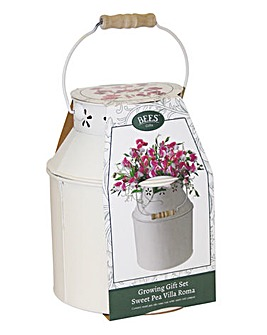Sweet Pea Milk Churn Gift