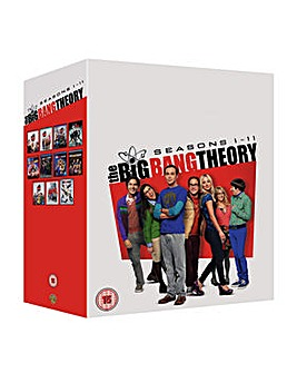 Big Bang Theory Season 1 To 11