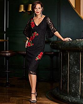 Joanna Hope Lace Applique Dress