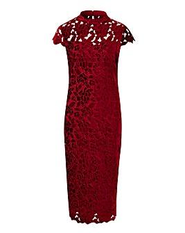 Joanna Hope Velvet Lace Dress