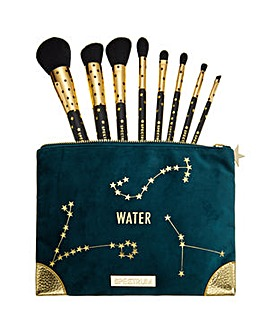 Spectrum Zodiac Water Brush & Bag Set
