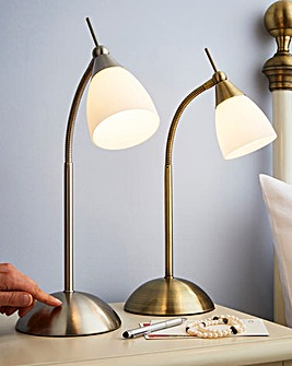Flexi Neck Touch Lamp AB