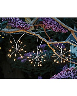 Smart Garden Starburst String Lights