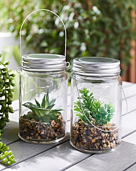 Set of 2 Succulent Jars with LED Lights