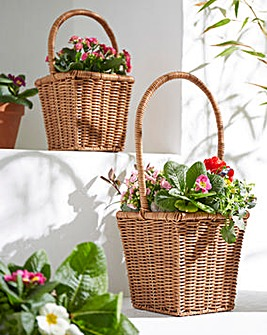 Set of 2 Basket Planters